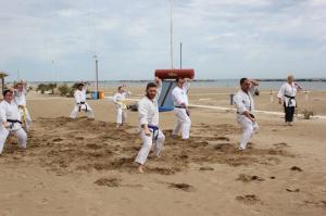 Stage karate 5