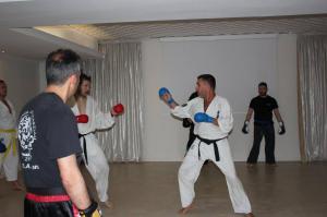 Stage karate 6